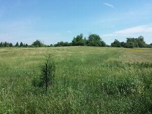 3 X 1 acre lots