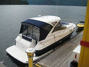 Great Deal! 2009 Regal Express Cruiser