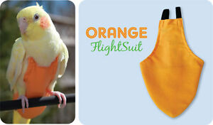 Avian flight suit for small conure