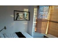 Bright Double Bedroom available
