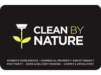 Are you looking for a domestic or commercial cleaning service?