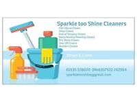 Sparkle too shine cleaning company doing the jobs you hate