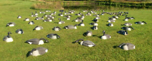 Goose and duck decoys for sale
