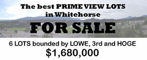 Rare find in DOWNTOWN WHITEHORSE - 6 adjacent lots!