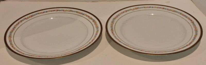 "2 VTG M & Z , AUSTRIA DINNER PLATES - 9.5"" DIAMETER-Floral Border, Gold Trim-EUC"