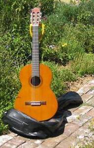 Yamaha CG100A Classical Guitar Albany Albany Area Preview