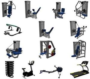 Looking for free exercise equipment  (bench with weights)