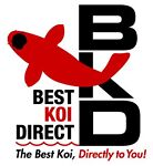 Best Koi Direct