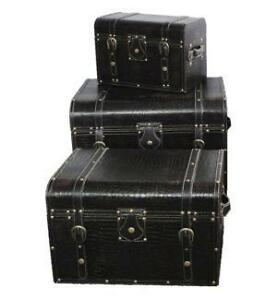 Leather trunk ebay leather storage trunks gumiabroncs Gallery