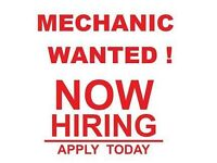 MECHANIC / CAR TECHNICIAN WANTED