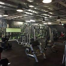 LIFESTYLE TRANSFORMATION personal training Balaclava Port Phillip Preview