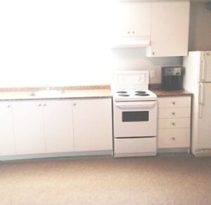 Updated 1 Bedroom Apartment With Free Parking & Cable TV