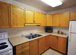 Beautiful All-Inclusive 2 Bedroom Near Fairview Mall Kitchener / Waterloo Kitchener Area image 5