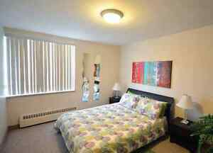 Beautiful All-Inclusive 2 Bedroom Near Fairview Mall Kitchener / Waterloo Kitchener Area image 7