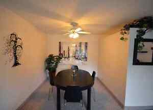 Beautiful All-Inclusive 2 Bedroom Near Fairview Mall Kitchener / Waterloo Kitchener Area image 3