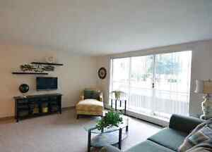 Beautiful All-Inclusive 2 Bedroom Near Fairview Mall Kitchener / Waterloo Kitchener Area image 4