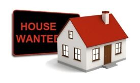 Professionals looking for a house for a long term rental!