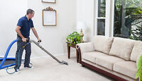 wow, action carpet cleaning, salmon arm.