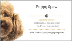 Professional dog grooming Lachine