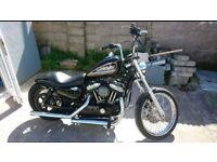 Harley Davidson Sportster XL 883R Custom Chopper Bobber
