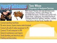 Property maintenance/Handyman, painter, flat packs, door locks, wall fixture hanging, leaking pipes