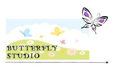 Butterfly Studio 2014