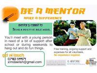 Volunteer Mentors