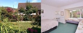Double room in friendly shared house in Lyme Regis