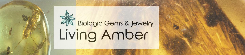 Living Amber