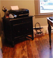 Beautiful Black Wood Filing Cabinet from Pier 1