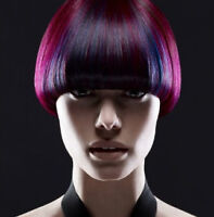 Learn Hairstyling from $14/Day