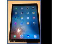 "iPad Pro 12.9"" 128GB Wi-Fi and Cellular"