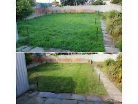 Gardening services-Local gardener-Lawn Reseeding-Hedge Grass cutting -Garden tidy up-Lawn mowing