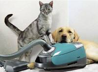 Affordable Cleaning & Pet Friendly!!