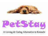 PetStay - Would you like to become one of our dog carers?