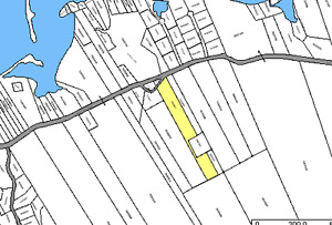 14.25 Acres of Land - Roberta, Dundee Area