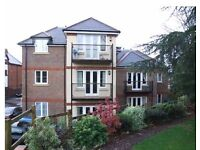 2 Bedroom Top Floor Apartment Available To Rent In Godalming From October 2016