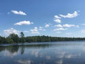 Striking, Large & South Facing Lakefront Lot for $70,000