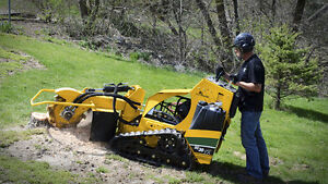 STUMP GRINDERS FOR RENT AT READY TO RENT EQUIPMENT!!