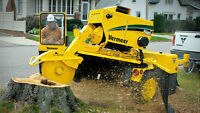 CL Stump Grinding ,10 Years Experience , Free Quote Call Today
