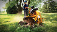 TREE REMOVAL STUMP REMOVAL & BRUSH CLEAN UP