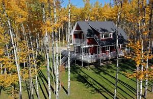 LOTS & HOMES FOR SALE. DEERE PARK, GULL LAKE