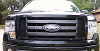 LOOKING FOR 2011 F150 GRILL