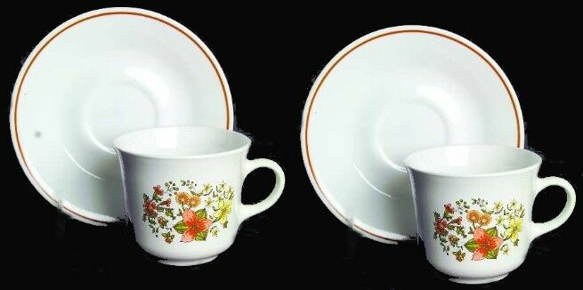 2 Corelle INDIAN SUMMER Cup & Saucer Sets Brown Band Retired Fall Flowers