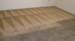 Carpet Cleaning Specialists & House Flood Water Removal