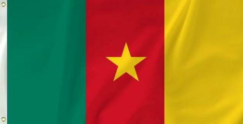 The National flag of Cameroon