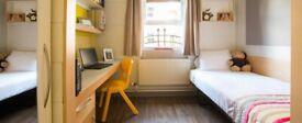 Elms Village BT9 Standard Room available