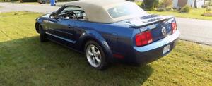 Mustang a L,état de neuf avec seulement 29000 Km A VOIR !!!
