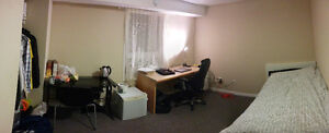 4 Month Sublet (May - Aug) - 5 Cardill Crescent Kitchener / Waterloo Kitchener Area image 3