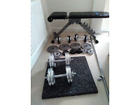 Free! Exercise bench, weights, barbell, dumbbells and mats